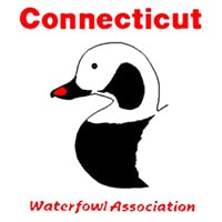 CONNECTICUT WATERFOWL ASSOCIATION